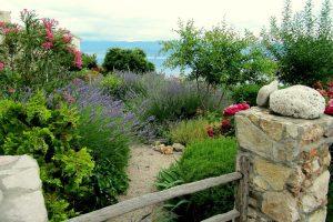 mediterrán hangulatú kert